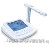 溶解氧测定仪LIDA980