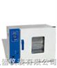 TS-WG20鼓风干燥箱   干燥箱