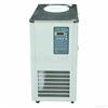 DLSB-10L/-20℃低温冷却液循环泵