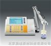 PP-20-P11酸度计,赛多利斯酸度计,精密酸度计