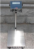 化工厂用的防爆电子秤