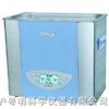 SK3300LHC超声波清洗器