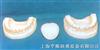 牙全可拆牙护理带舌头牙刷模型