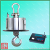 OCS-SZ-H耐高温电子吊秤