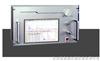 TRY-SK-3Q05氫焰色譜儀   色譜儀