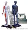 光电感应键控人体针灸穴位发光模型