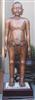|铜人针灸模型(真铜全铜 85CM 成人中型)