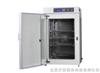 TA-SK气套式二氧化碳培养箱