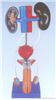 男性泌尿生殖系统解剖模型