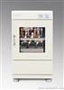 ZHWY-2102C双层小容量全温度恒温摇床