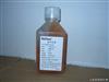 SH30066.02FetalClone® II(hyclone)