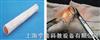 肠管吻合模型(20mm)