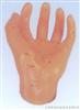 足针灸模型13CM