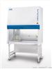 ESCO LB2-B二级生物安全柜