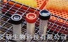CST 抗體MAPK Family Antibody Sampler Kit