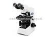CX31生物显微镜奥林巴斯CX31生物显微镜