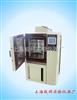 YSGDW-100小型触摸屏高低温箱