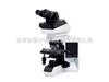 BX43系列奥林巴斯 BX43 系列生物显微镜/BX43系列研究级生物显微镜价格