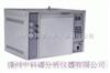 合成气中微量硫化氢分析专用气相色谱仪