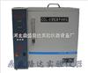 CCL-5型氯离子分析仪价格