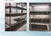 北京植物組織培養架價格