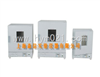 DGG-9030AD智能型立式鼓风干燥箱/森信恒温干燥箱/DGG-9030AD鼓风干燥箱
