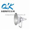 NTC9210-250W/400WNTC9210 防震型投光灯,中国石油化工大型企业特配海洋王投光灯-250W/400W