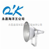 NTC9210-J250防震型投光灯-NTC9210-J250-海洋王投光灯-中国石油化工大型企业特配250W灯具