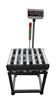 供应武汉 滚筒秤,75kg滚桶秤,生产线复检电子秤