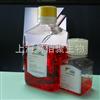 M2012HSCM猴造血干细胞无血清培养液