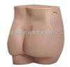 臀部注射实习模型