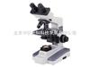 麦克奥迪B1生物显微镜